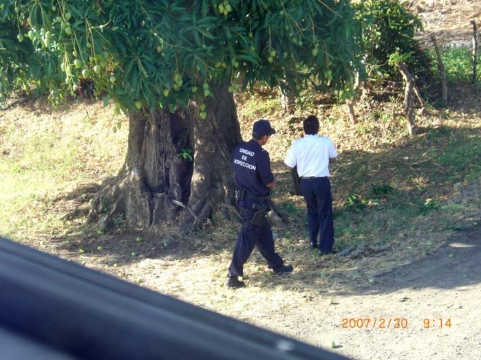 2007年2月19日(月)~ホンジュラス→ニカラグア→コスタリカ→…ついに上陸パナマ!! 006