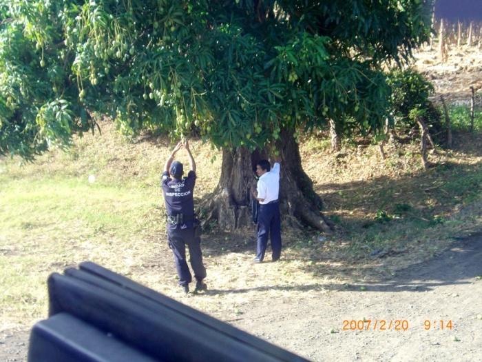 2007年2月19日(月)~ホンジュラス→ニカラグア→コスタリカ→…ついに上陸パナマ!! 005